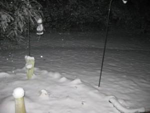 snow20110109