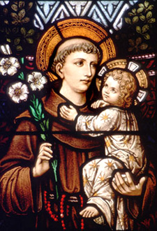 St. Anthony of Padua, Doctor of the Church